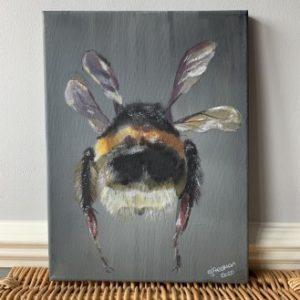 Bee Butt - CJF678