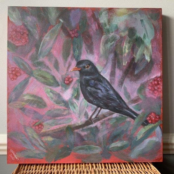 Blackbird - CJF1707