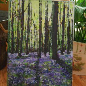 Mitcheldever Bluebell Woods - CJF661