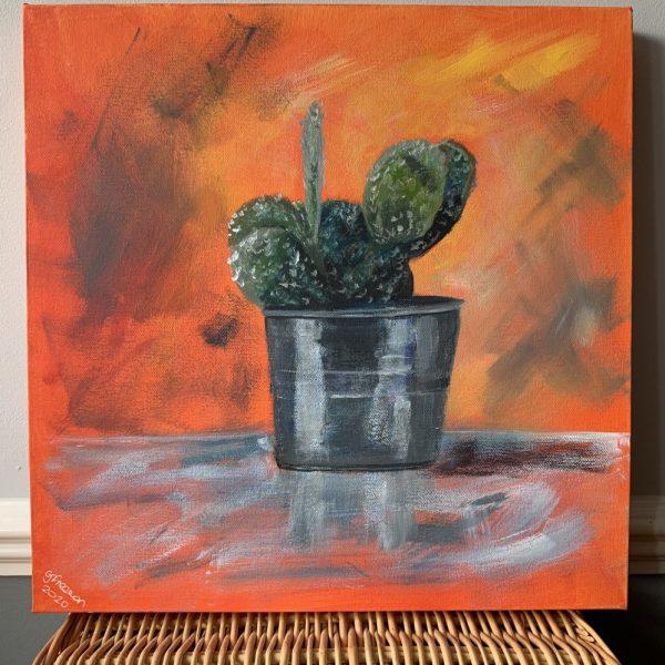 Cactus - CJF1708