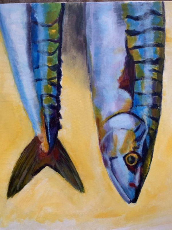 Mackerel - CJF1719