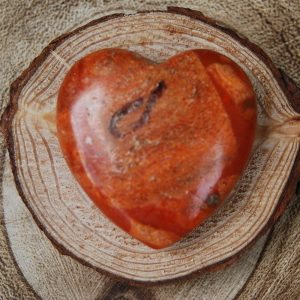 Polished Sea Bamboo Heart Crystal - CJF105