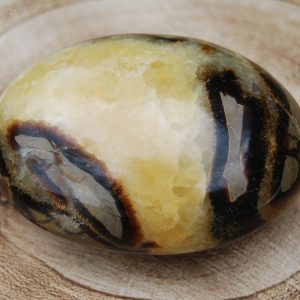 Septarian Pebble - CJF053