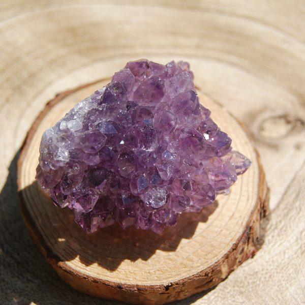 Amethyst Pine Cluster - CJF781